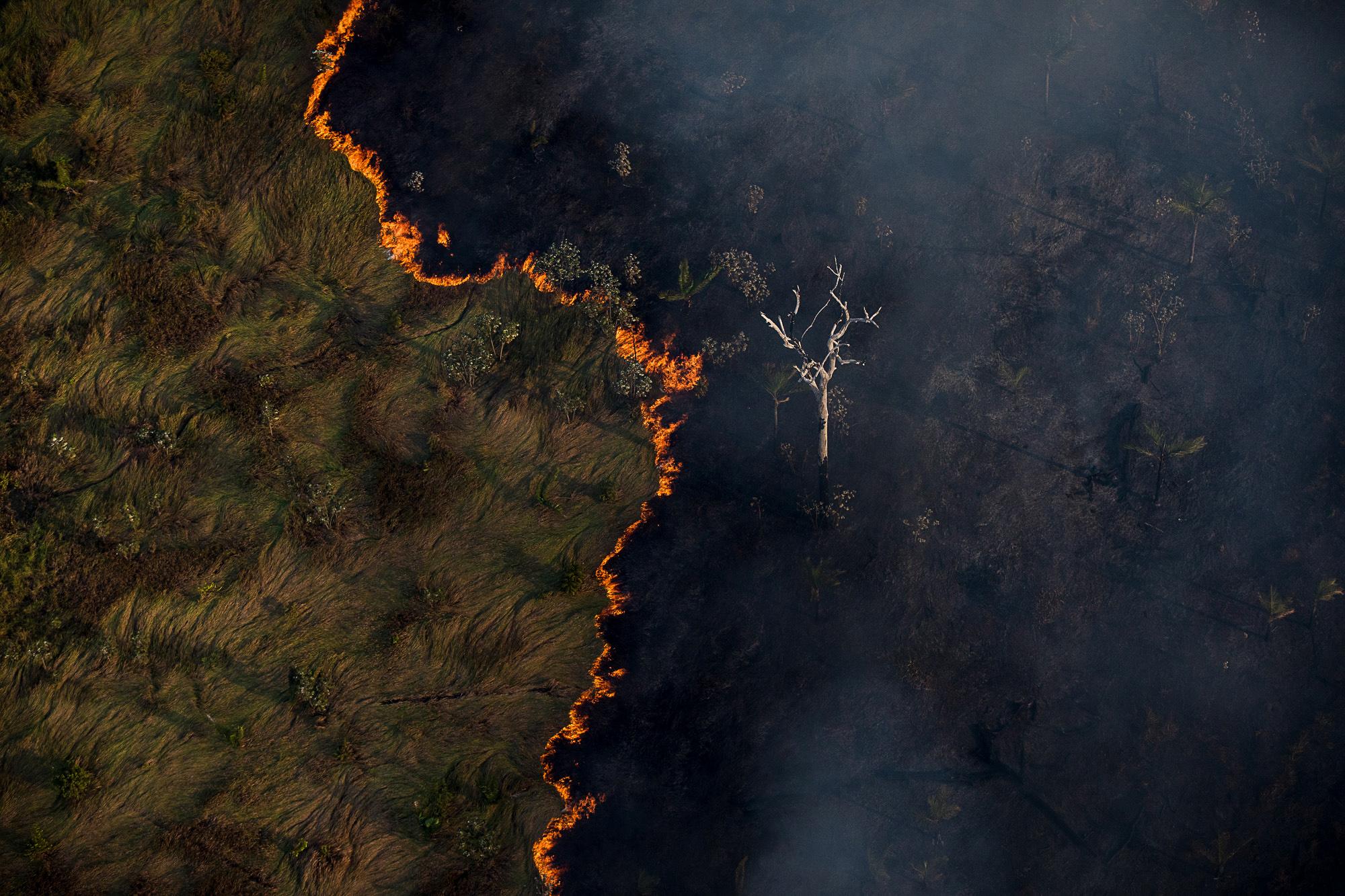 Queimada e vista em meio a area de floresta próximo a capital Porto Velho. Foto: Bruno Kelly/Amazonia Real