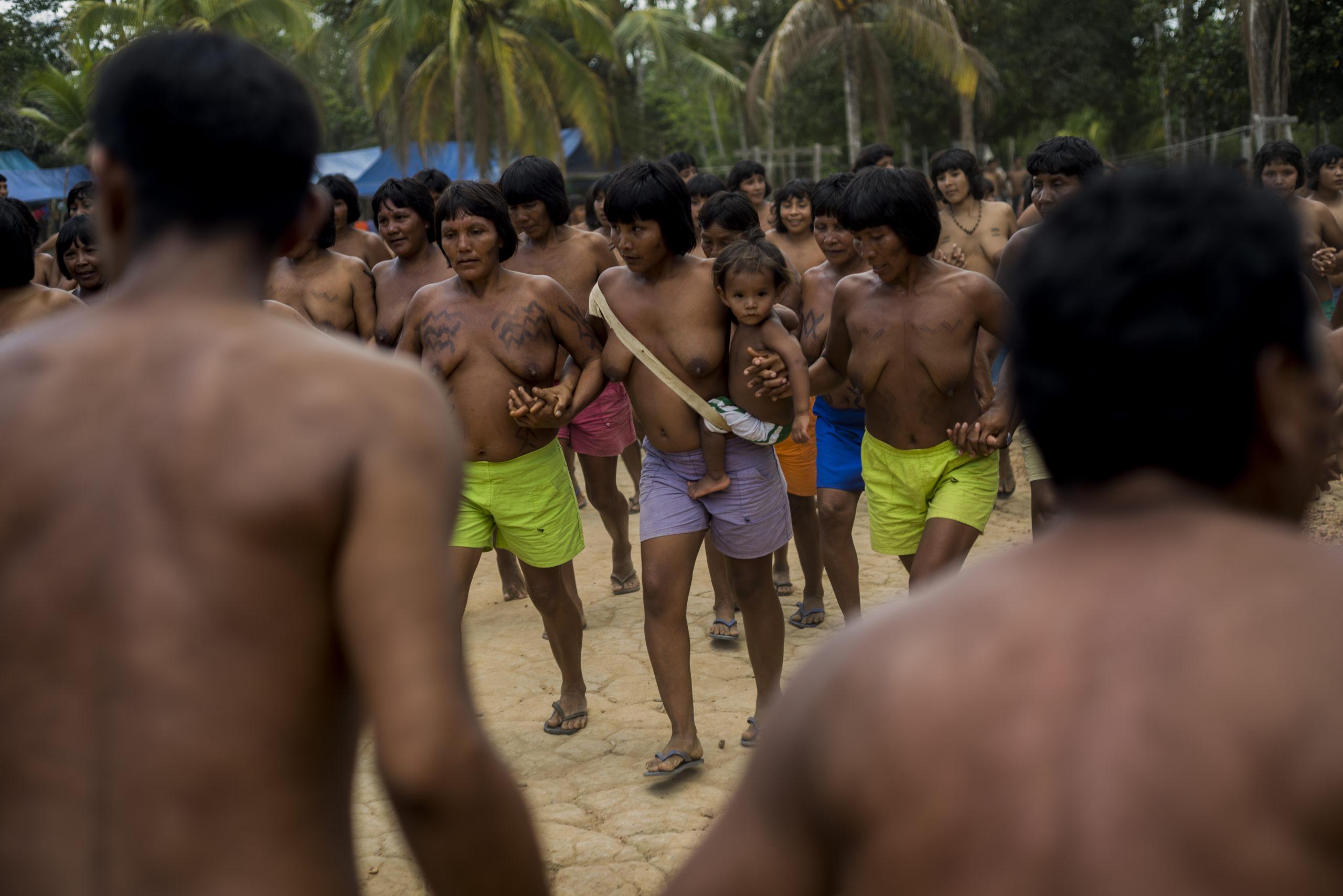 Terra indígena Waimiri-Atroari, na divisa entre Roraima e Amazonas. Foto: Raphael Alves/TJAM